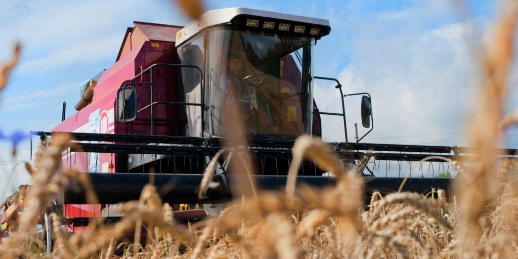 уборочная урожай уборка зерна зерновые и зернобобовые