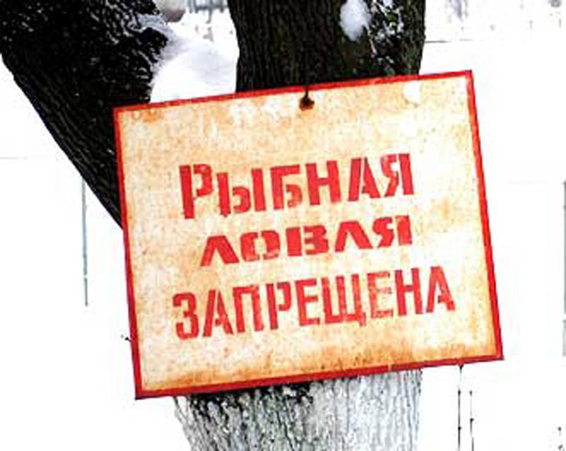 запрет на ловлю рыбы киев