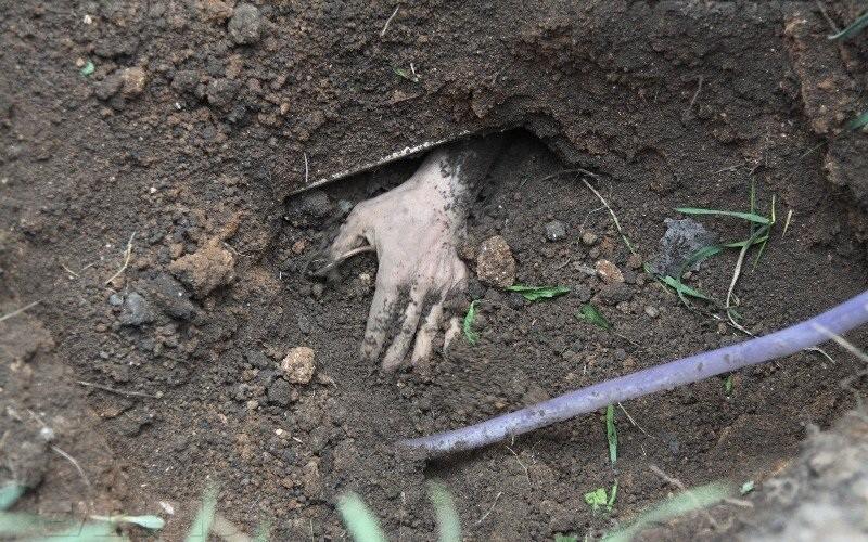 УВД: тело жителя Орши, который числился пропавшим, отыскали накладбище